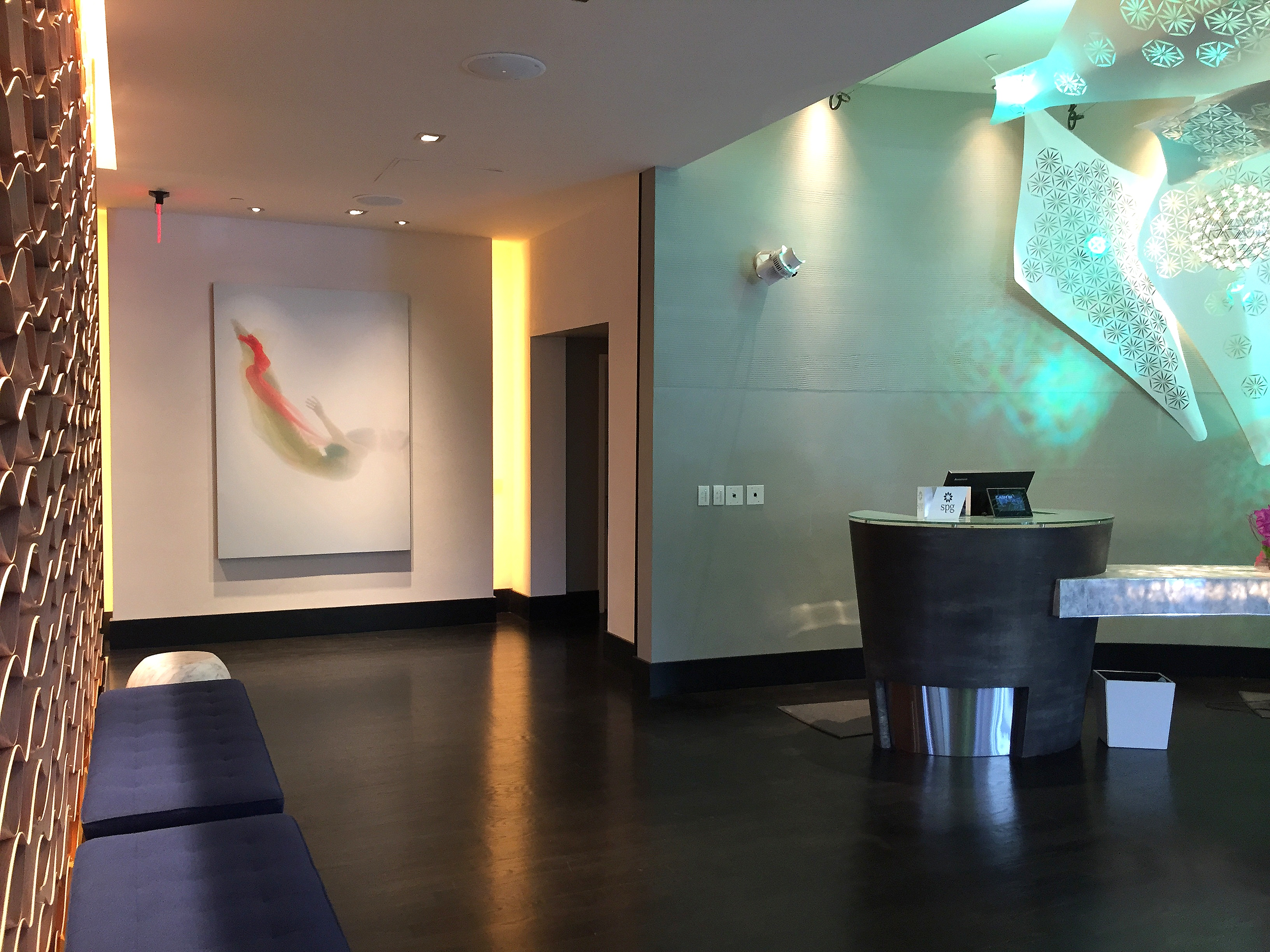 Featured Plaster Wall at The W Hotel Los Angeles
