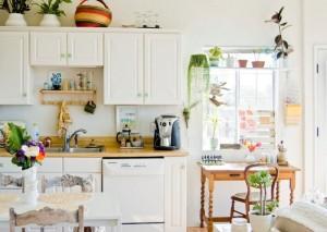 kitchen-plants
